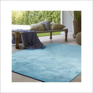 Angela Pinheiro Carpete Azul (1)